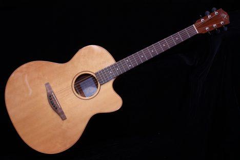 Avalon AS-100CE Acoustic Guitar