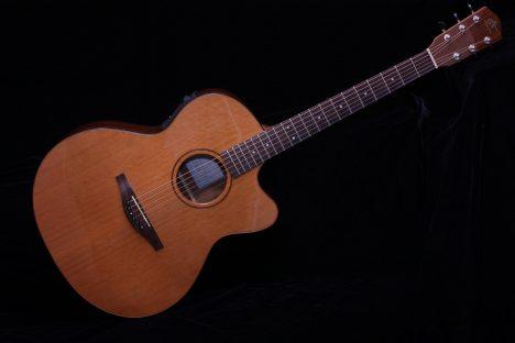 Avalon AS-201CE Acoustic Guitar