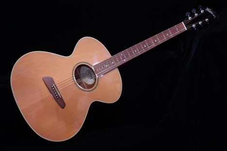Washburn PR-200 Prairie State Acoustic Guitar